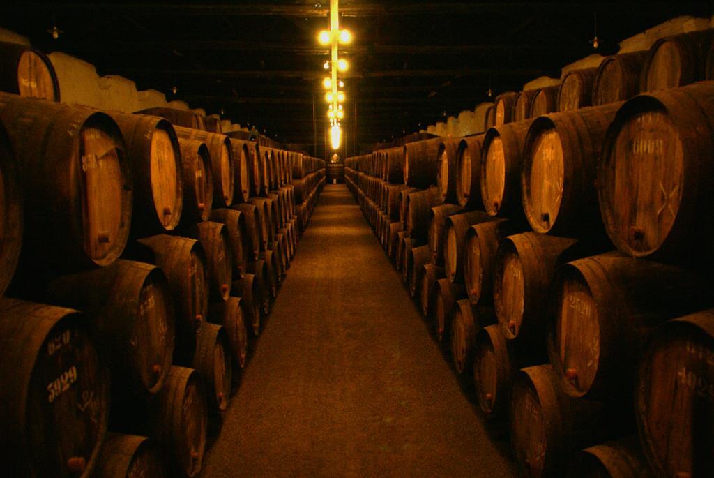 as vinícolas de vinhos são escuras pois a luz pode aquecer a bebida e alterar seus aromas e sabores