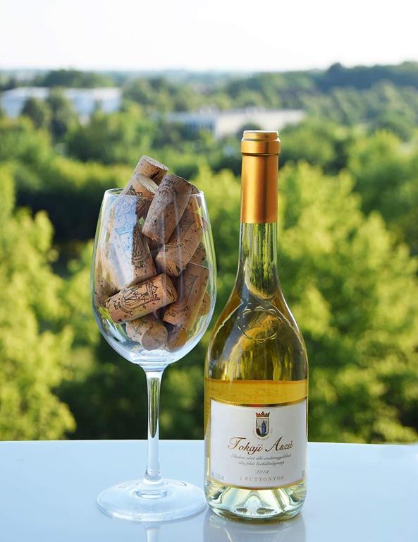 vinhos brancos fazem boa harmonização com pratos amargos