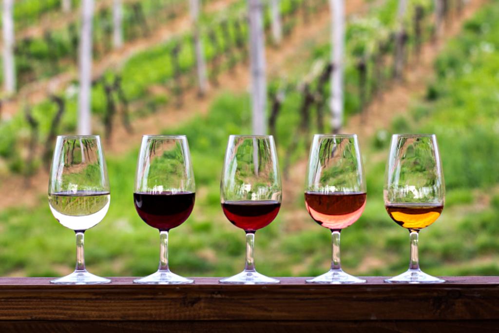 melhores vinhos brasileiros 2018