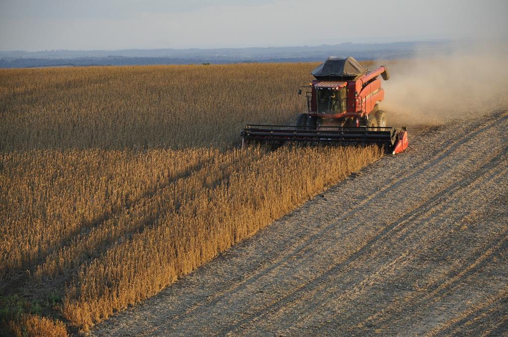 as colheiteiras não podem transitar nas rodovias públicas devido às suas dimensões e riscos que apresenta