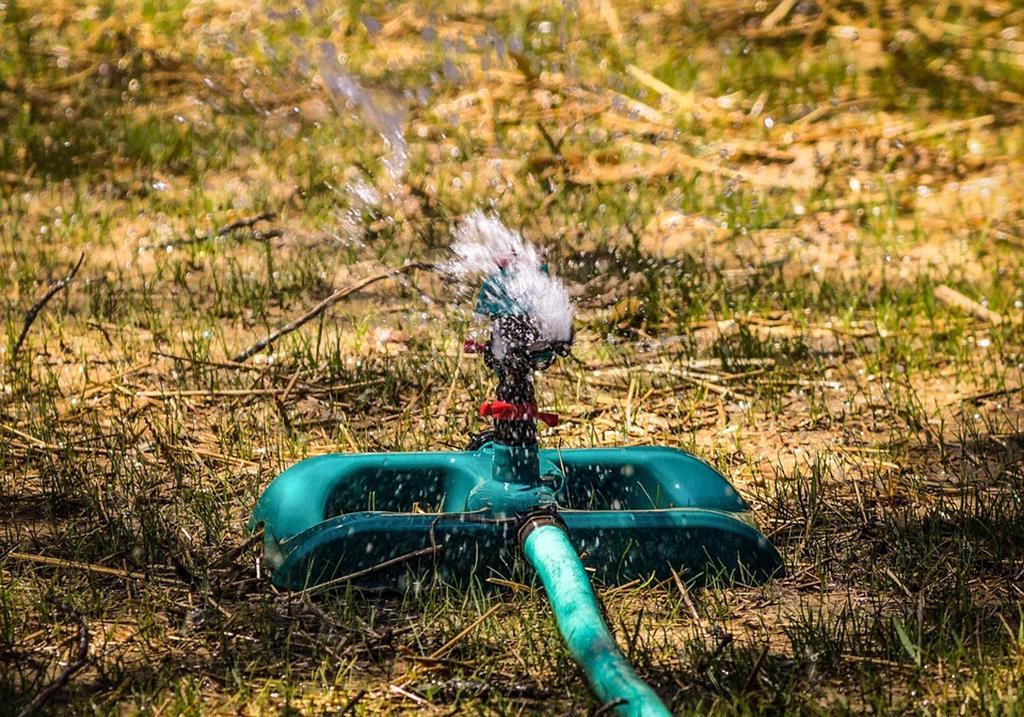 os sensores do irrigador são capazes de medir a umidade e temperatura do solo para verificar quando é necessário aguá-lo