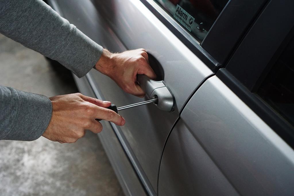 a maioria dos estados oferece a possibilidade de estorno em casos de roubo ou furto